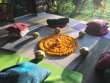 Load image into Gallery viewer, Bali Qi Gong 10 Day Retreats