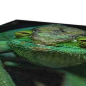 MR PARSON OUR PARSON'S CHAMELEON - PRINTED FOR YOU CANVAS