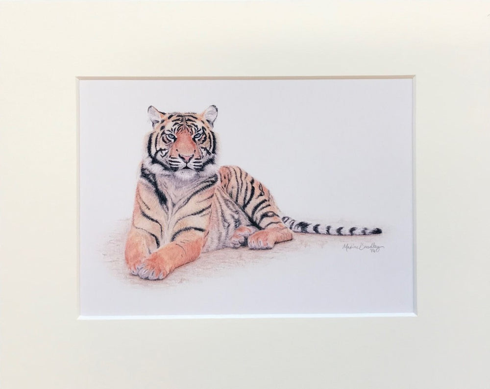"Load image into Gallery viewer, Maxine Bradley 10x8"" Mounted Print - Tiger"