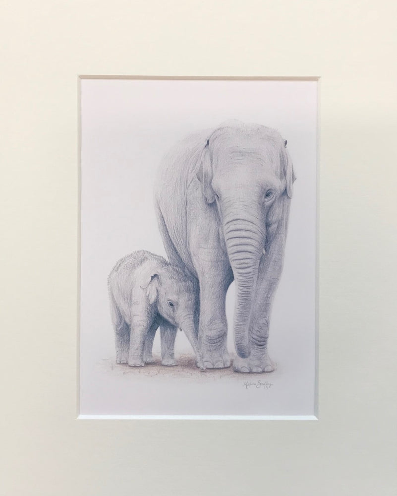 "Load image into Gallery viewer, Maxine Bradley 10x8"" Mounted Print - Elephants"