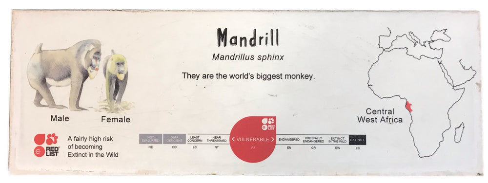 Mandrill ID Sign Landscape