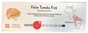 Load image into Gallery viewer, False Tomato Frog ID Sign Landscape