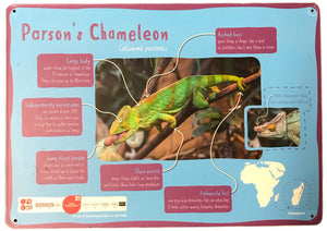 Load image into Gallery viewer, Parson's Chameleon Sign