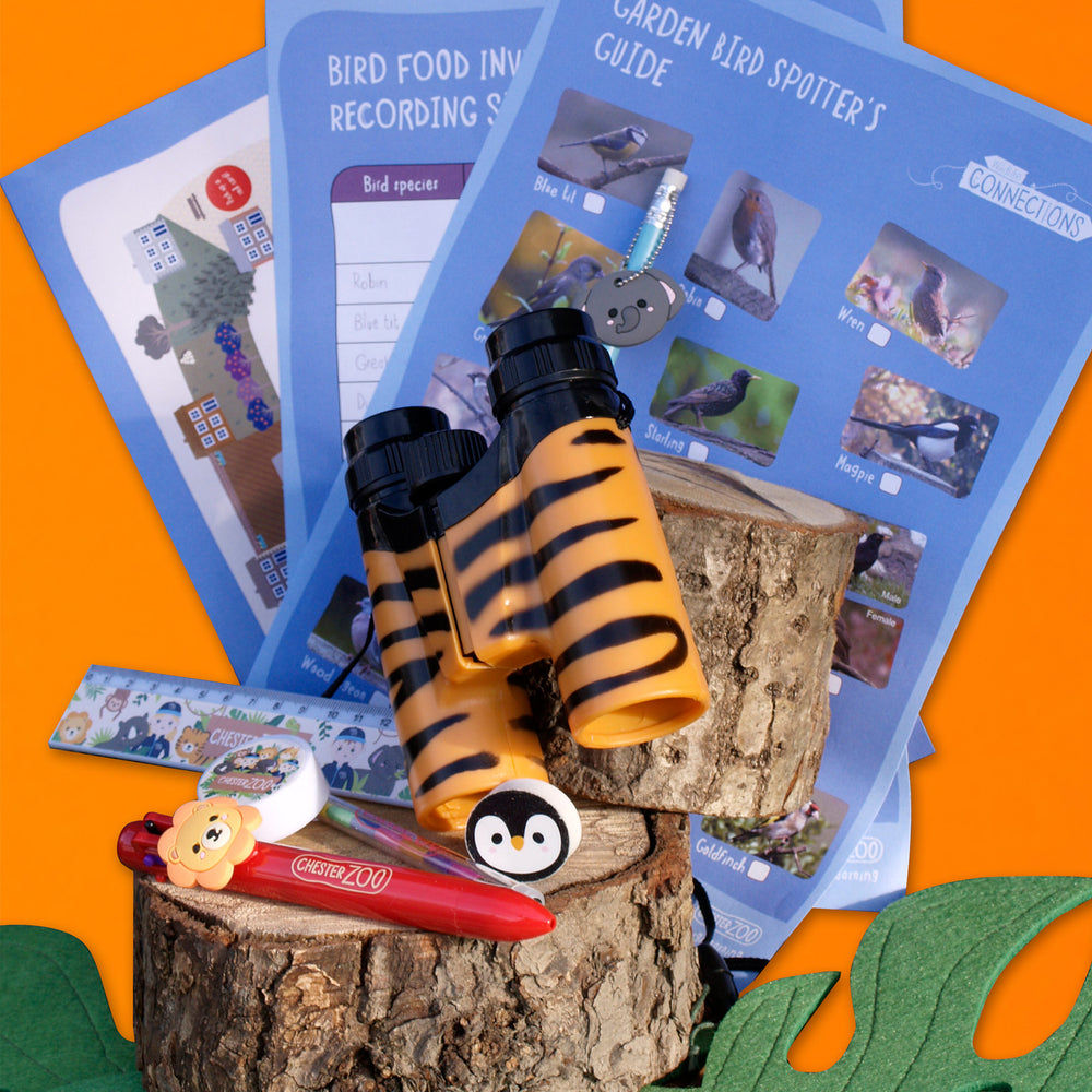 HOME SCHOOLING YOUNG EXPLORER KIT