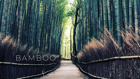 sustainable fabrics to add to your wardrobe, bamboo