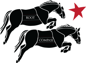 Root Compass