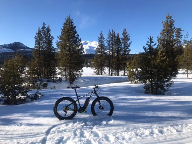 Bulls Fat Tire Bike Snow Riding