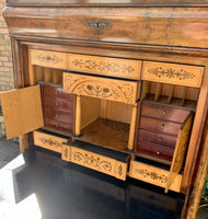 German Cabinet with fitted Interior
