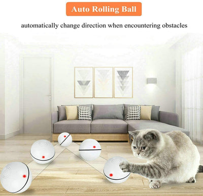 Cat & Puppy Toys - Interactive Automatic Self Rotating Rolling Balls - Furnish Fresh Canada Home Furnishings & Great Deals.