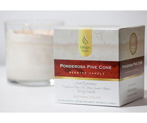 Ponderosa Pine Cone Scented Candle, Natural Color, Box