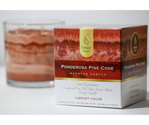 Ponderosa Pine Cone Scented Candle, Vibrant Color, Box