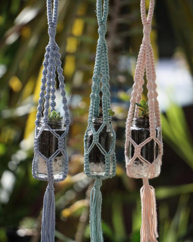 Composed Confusion | Macrame Plant Hanger