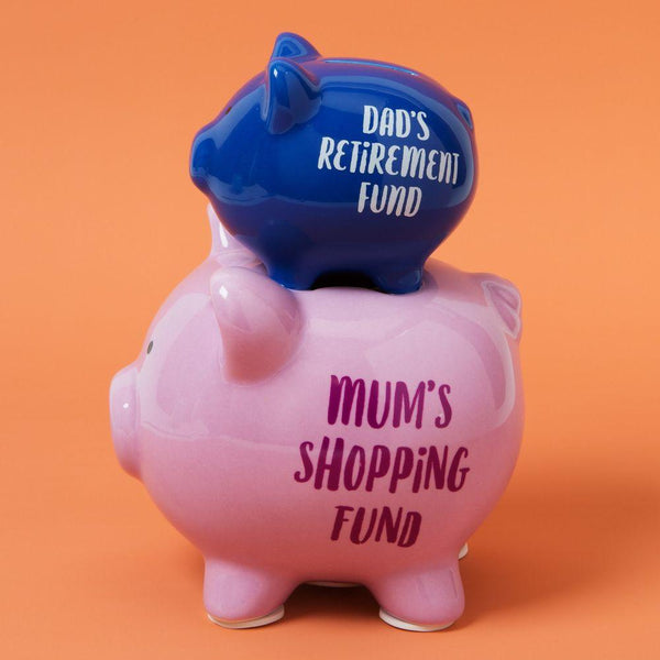Dads retirement fund and Mums shopping fund. When a coin is put into the dads retirement fund it will go through to mums shopping fund