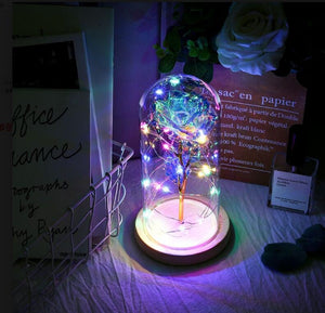 LED Enchanted Galaxy Rose Eternal 24K Gold Foil Flower With Fairy String Lights In Dome