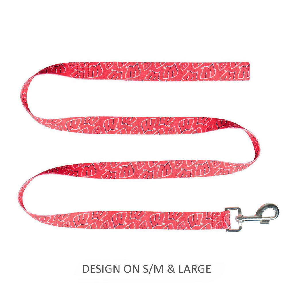 Wisconsin Badgers Pet Nylon Leash - Furry Friend Frocks