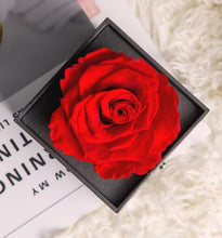 Load image into Gallery viewer, Eternal Roses In Acrylic Glass Box