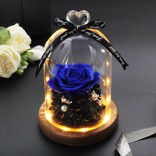 Immortal Rose in LED Glass Dome