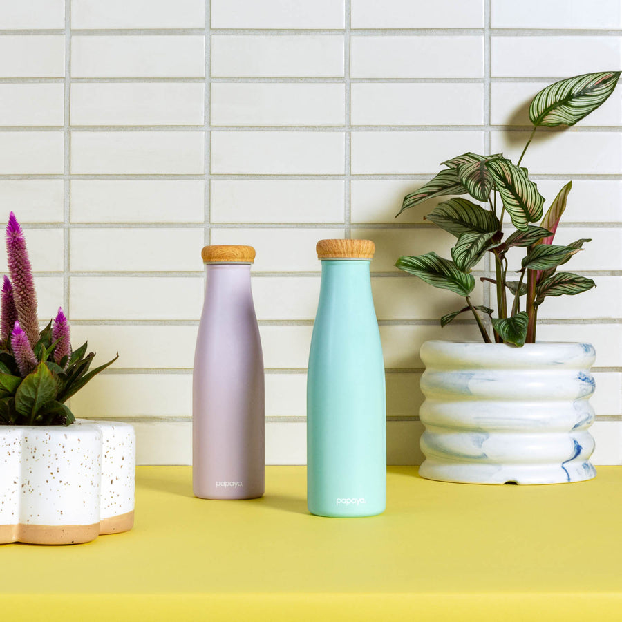Two reusable stainless steel water bottles in soft mint green and soft lilac with bamboo caps next to potted plants