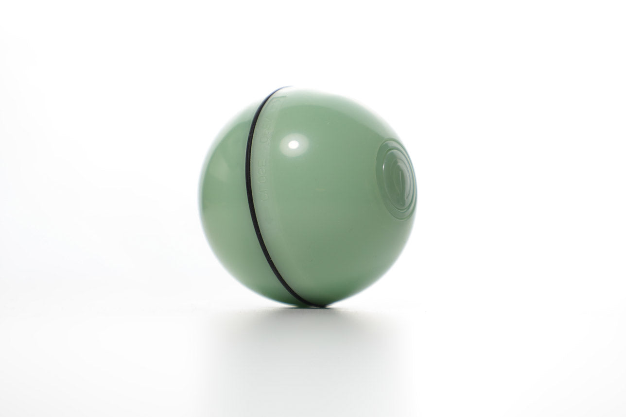 Smart Interactive Pet Ball