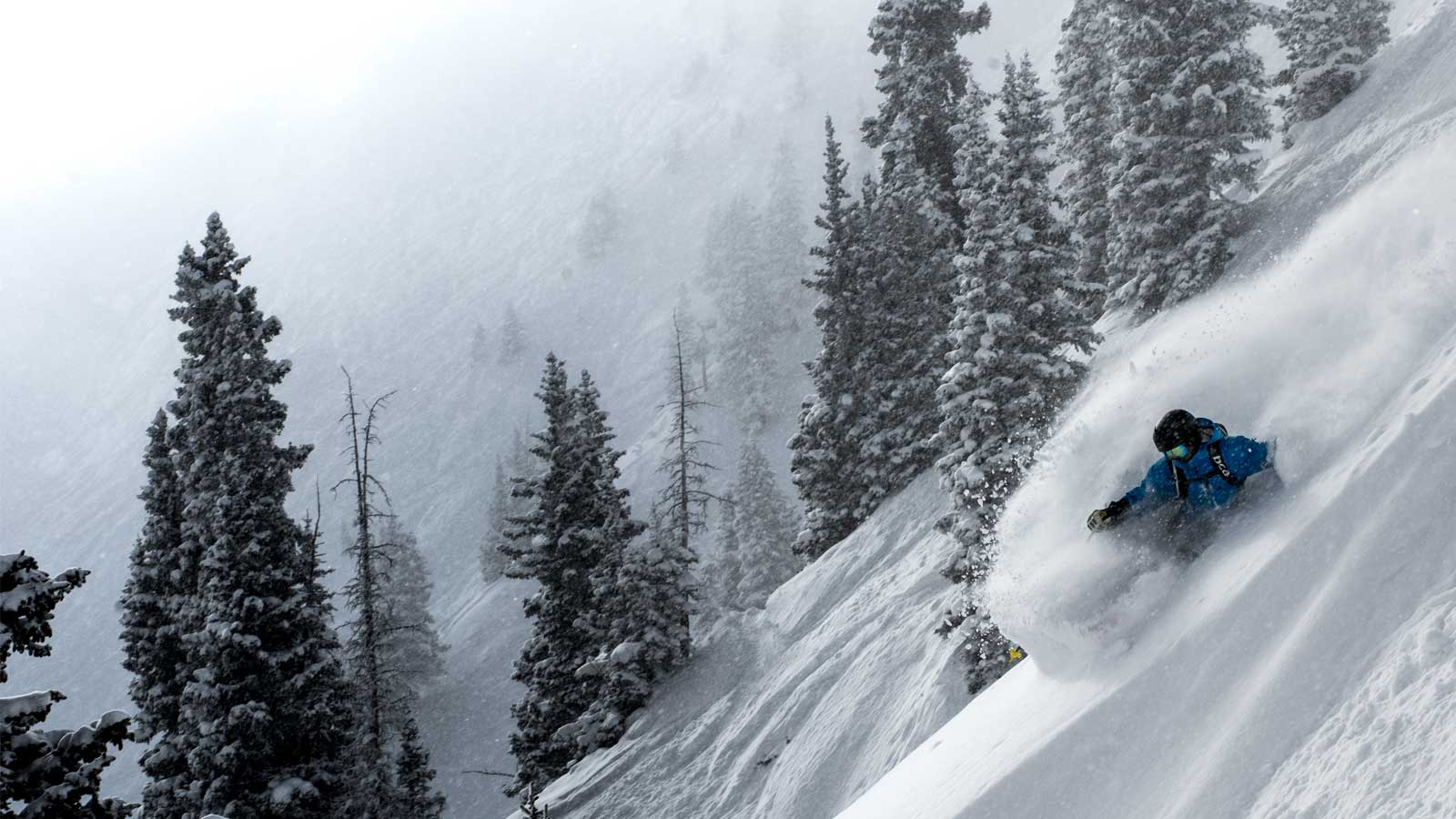 george rodney making a turn in highlands bowl