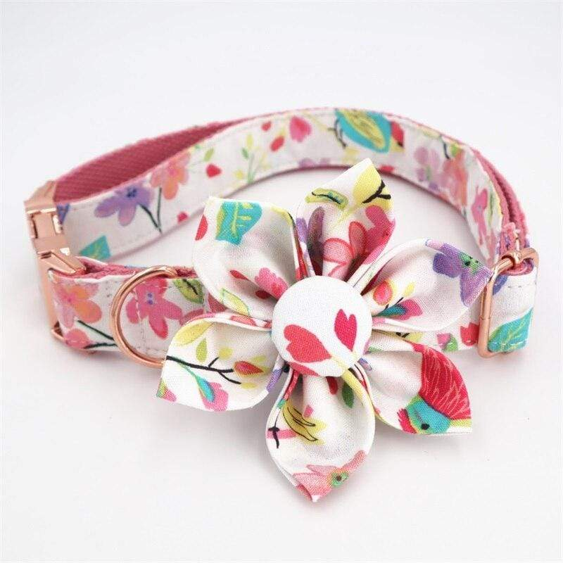 Personalized Dog Collar with Pastel Flower