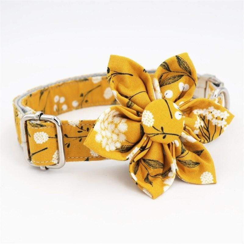 Personalized Flower in White Dog Collar