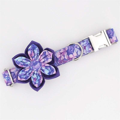 Personalized Violet Flower Dog Collar - Magic Purple Collar Leash and Bow set