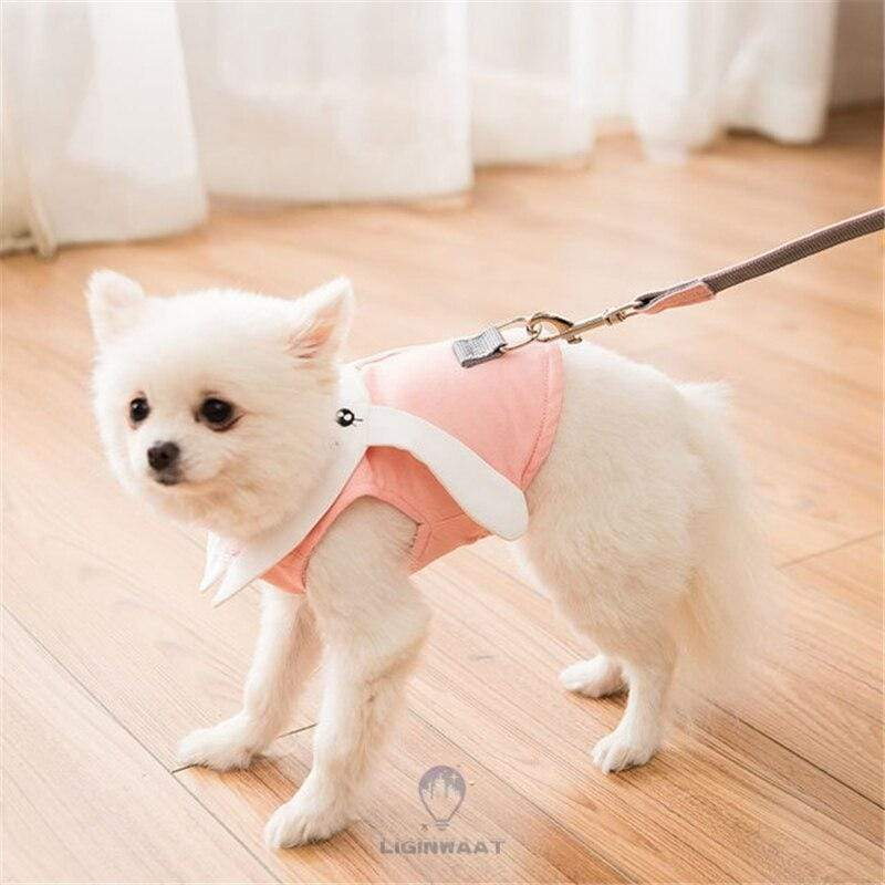 Premium Rabbit Cartoon Vest Harness & Leash Set