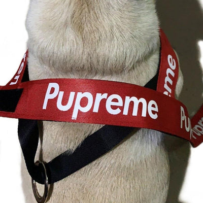 Pupreme Dog Harness & Leash Set