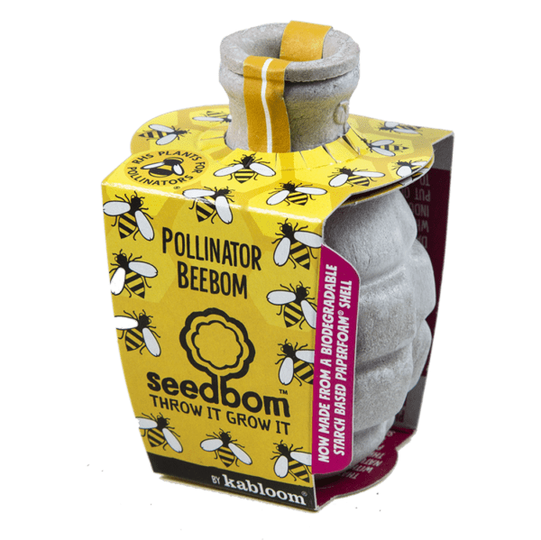 Pollinator Beebom Seedbom - Meli & Ro | Kids Activity Packs
