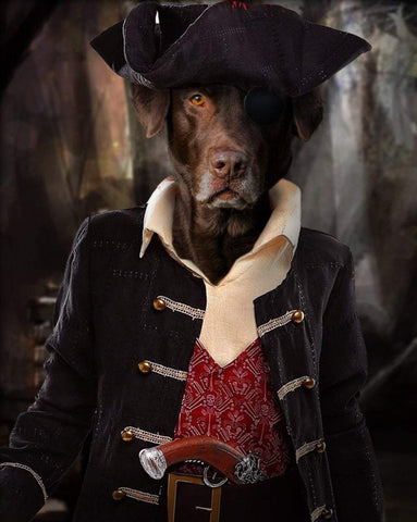 Pet Portrait - Male Pirate #2