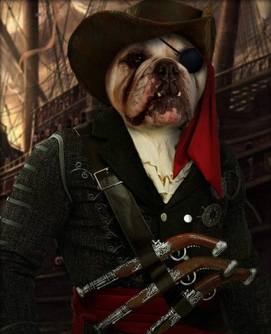 Pet Portrait - Male Pirate #3