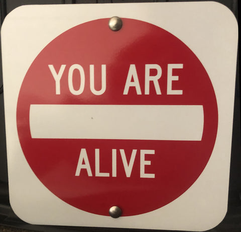 You Are Alive by Scott Froschauer