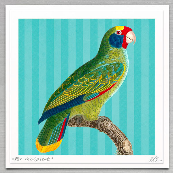 Father's Day - Green parrot
