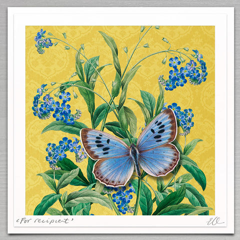Special - Forget-Me-Not