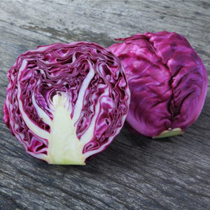 Cabbage Red (Whole)