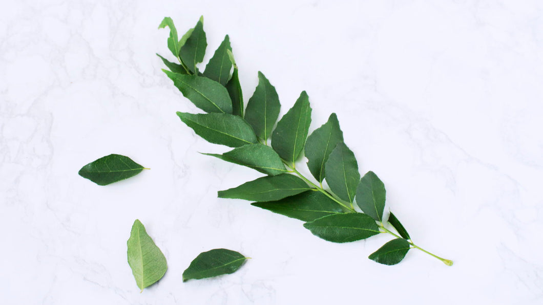 Herbs Curry Leaf