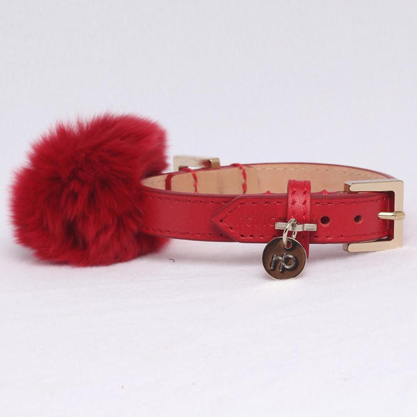Luxus Halsband Leder Rot - Not Too Pet