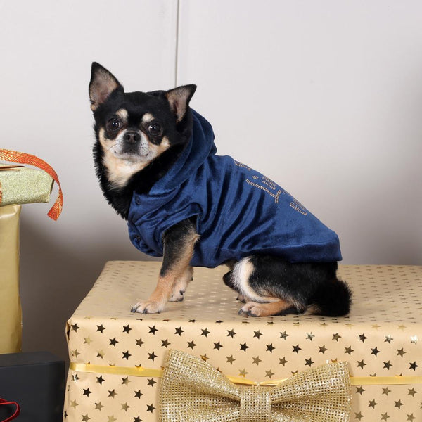I Am A Limited Edition Sweater in Blau - I Love My Dog