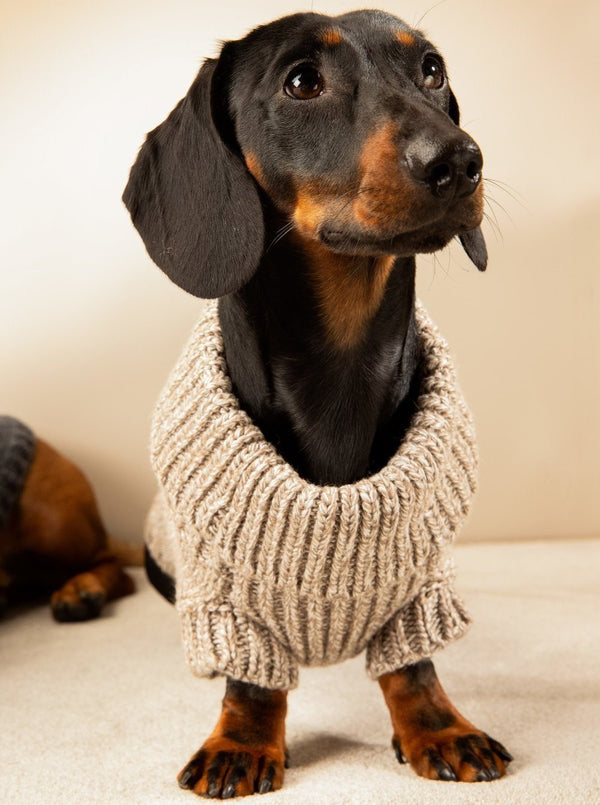 Strickpullover Hund Beige - Milk & Pepper