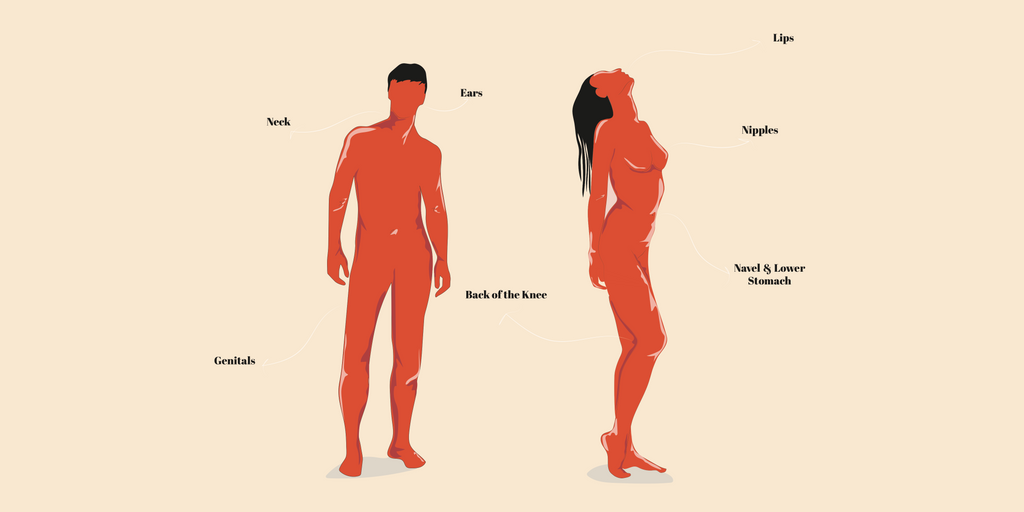 An illustration of an (orange coloured) naked man and woman standing with the erogenous zones on their body labelled.