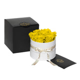 Yellow Roses - Classic Round Box Bouquet - Small (White Box)