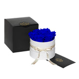 Royal Blue Roses - Classic Round Box Bouquet - Small (White Box)