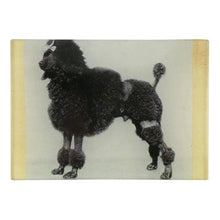 Load image into Gallery viewer, John Derian Black Poodle Mini-Tray