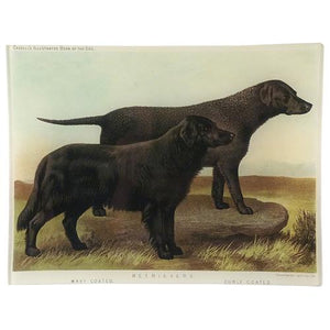 John Derian Black Retriever Rectangular Tray