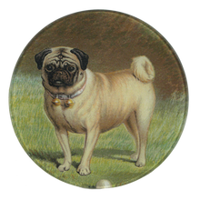 Load image into Gallery viewer, John Derian Pug and Ball Round Trinket Tray