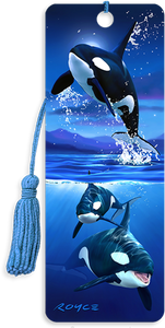 3D Bookmarks: Orcas