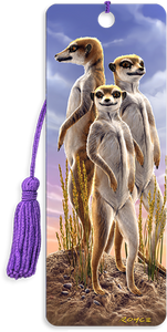 3D Bookmarks: Meerkats