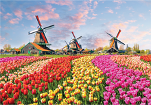 Load image into Gallery viewer, World's Smallest: Dutch Windmills