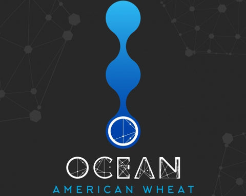 Ocean Lab - American Wheat